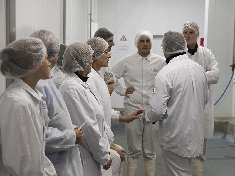 Equipe de la manufacture